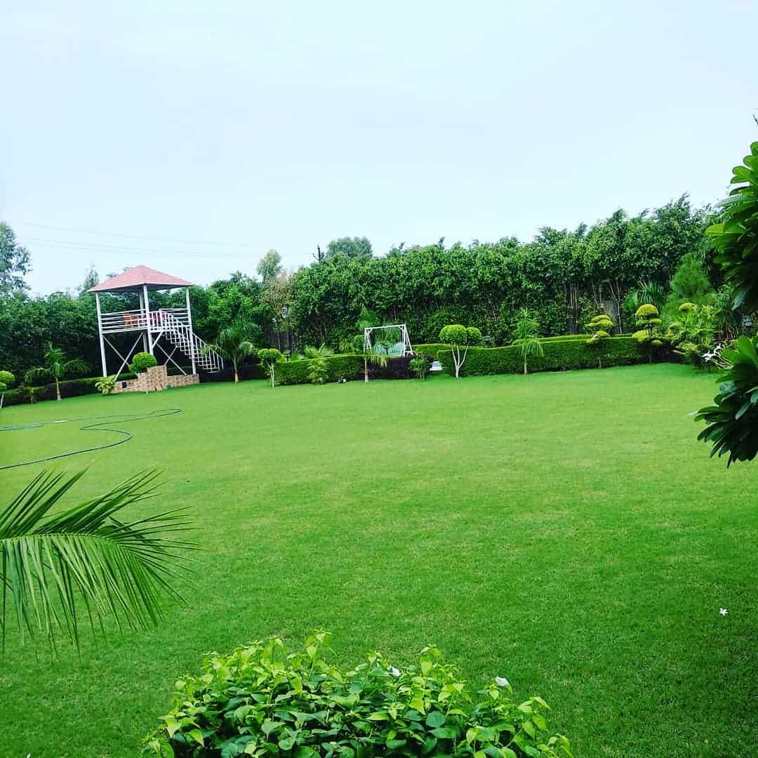 Theme Party at Farmhouse 3301 - Sector 135 Noida