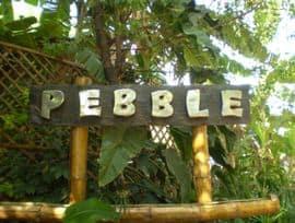 Pebble Sadashiv Nagar