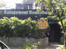 Rainforest Resto Bar